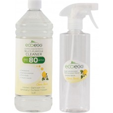 Спрей-концентрат антибактериальный EcoEgg Citrus